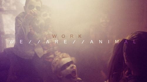 WE ARE ANIMAL – Work