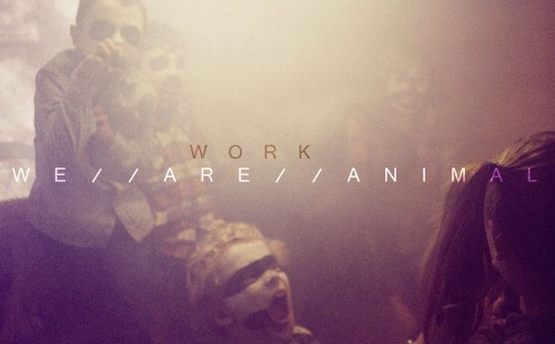 WE ARE ANIMAL - Work